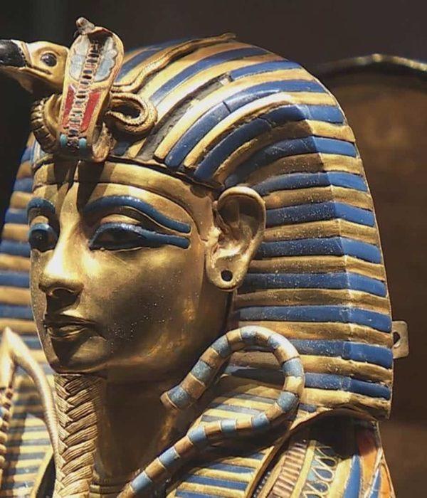 L'actualité en Egypte