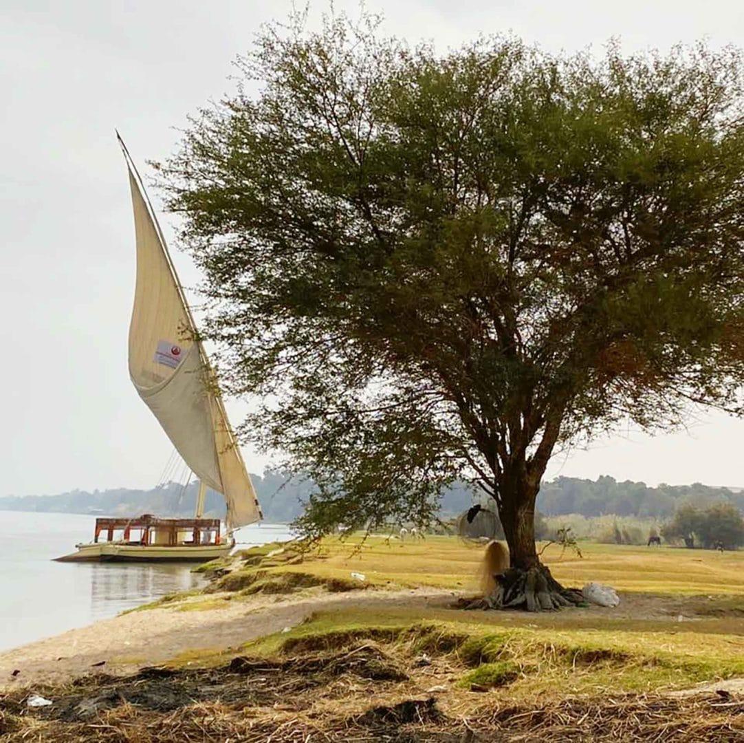 Croisière sur le Nil en felouque et le Caire