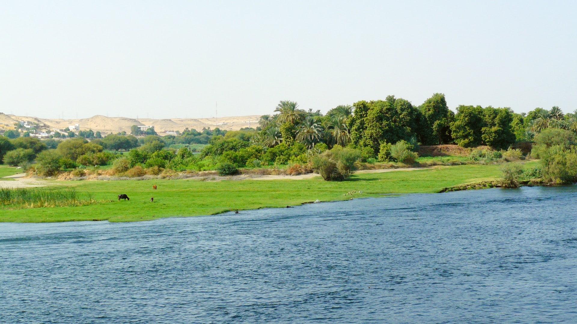 La Moyenne Egypte voyage I Claudia et Gil Schweich et les enfants